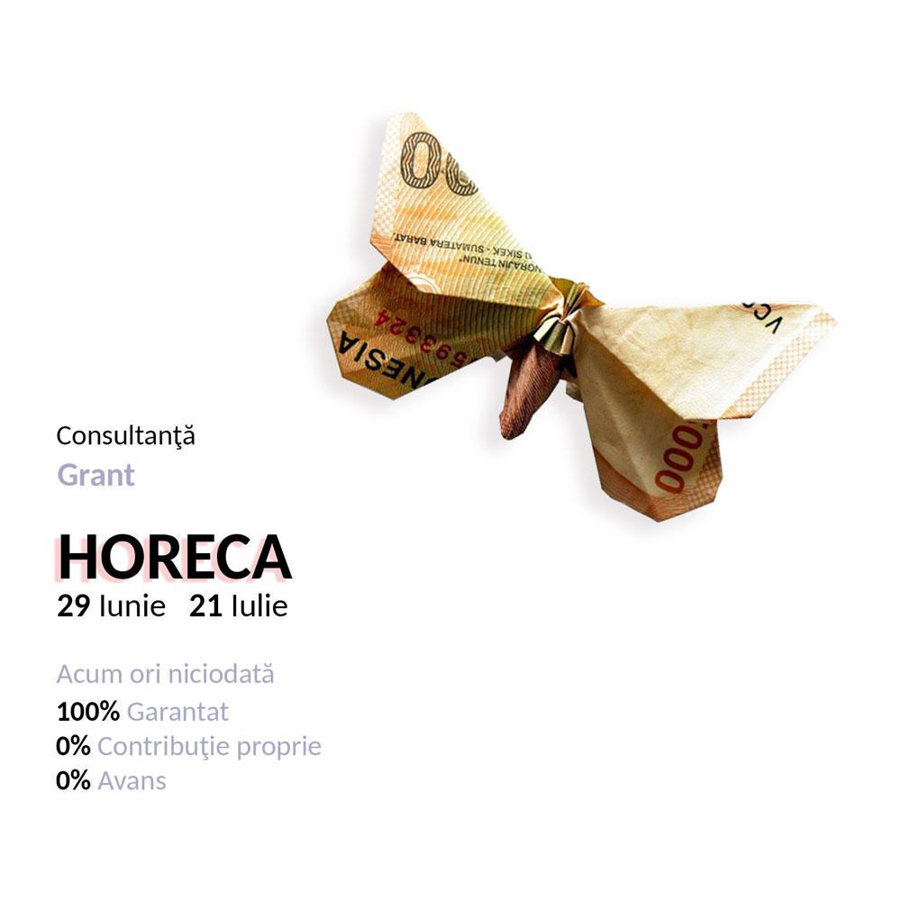 Consultanţă grant Horeca