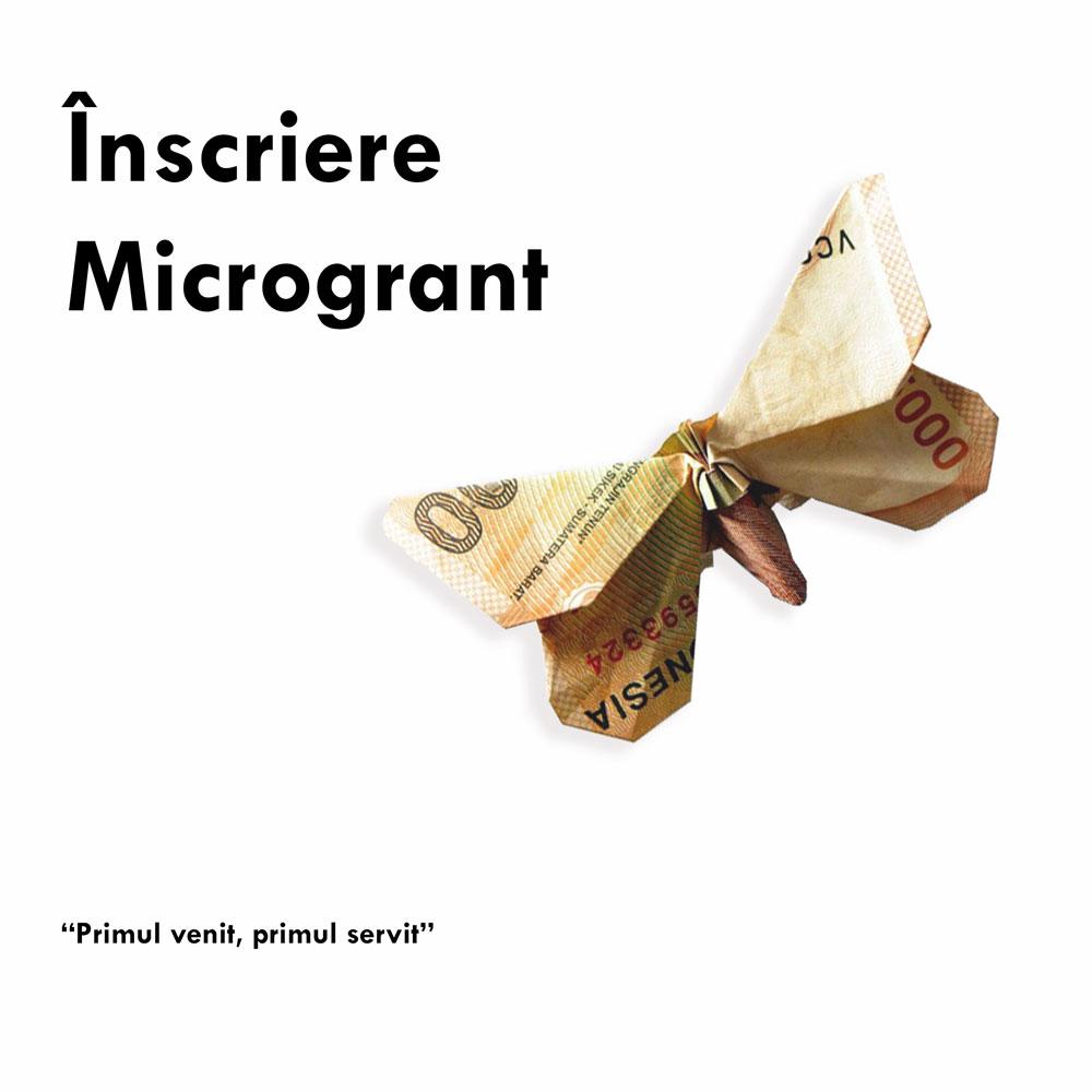 Formular Înscriere Microgrant